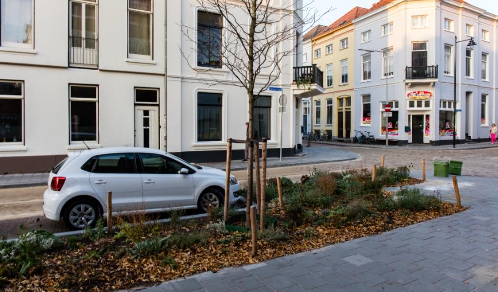 De bomen en struiken worden geplant